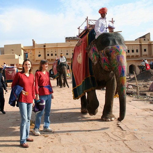 Elephants arriving at Amber Fort