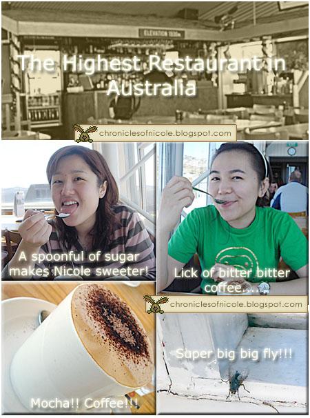 koscisuzko cafe