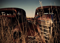 the old car graveyard (danielle marie photography) Tags: sunlight abandoned car rust decay plymouth ghosttown prairie saskatchewan 1022mm themissouricteau