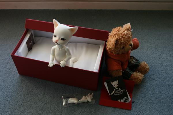 [Piposdoll Baha] Bones, mon petit chaton ^^ 455567644_c7bb1d8a1f_o