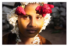 Roses (Elishams) Tags: flowers roses portrait india beauty indian traditional faith culture marriage karnataka indianarchive hampi inde southindia travelstory indianwedding  muslimwedding 50millionmissing goldenphotographer