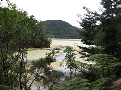 coastal track, abel tasman national park (Maggie Paige) Tags: newzealand southisland abeltasmannationalpark coastaltrack