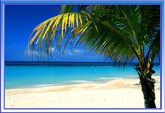 Roatan - Paradise, Please Enter