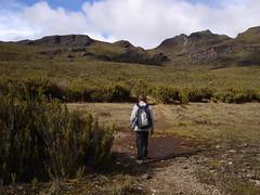 Paramo Near Chirripo (Bryan-Long-Photography) Tags: travel costa point climb high hiking rica hike climbing cerro backpacking backpack chirripo