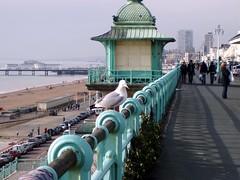 Brighton 042