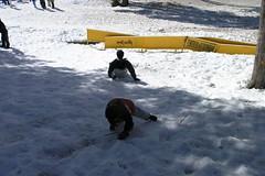 Snow 067 (Jill Huang) Tags: snow sledding boreal 20070217