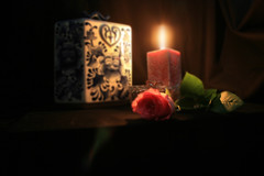Rose & Candlelight (RedHatGal: Barbara Butler/FireCreek Photography) Tags: ca pink light rose candle candlelight bakersfield gaussianblur kerncounty anawesomeshot impressedbyyourbeauty redhatgal kerncountyphotographers