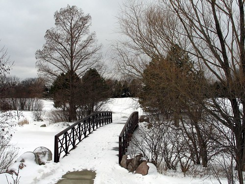 Flick Park bridge in winter