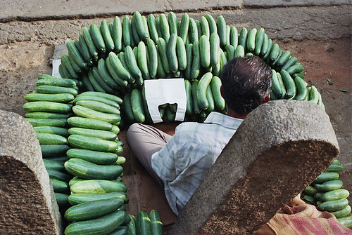 Cucumber Seller by dodo_ind.