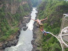 The best bungy jump photo ever
