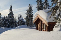 Winter Snow in Norway (Monkey Images) Tags: winter house snow mountains beautiful norway wonderful landscape norge amazing pretty snowy norwegian logcabin narnia chalet snowfall wonderland picturesque chalets scandanavia hedmark enchanting georgeous ringsaker ljsheim ljoesheim ringsakermountains