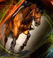 Dorset Hunter-Jumper (Isabelle Ann) Tags: horse art digital photoshop caballo cheval jumping vermont photographer digitalart isabelle jumper hunter cavallo cavalo pferd equine equus paard horseshows hunterjumper mostbeautiful manchestervt dorsetvt equineart vermontsummerfestival abigfave isabelleann isabelleanngreen equestrianart hunterjumpers dorsetsummerfestival equinephotographer hunterjumpershows artistichorse isabellegreen equitationart hunterjumperart dorsethorseshow hunterjumperphotography hunterjumprphotographer isabellegreenphotography isabelleannphotography isabelleannhorses mostbeautifulhorses equineartist hunterjumperphotographer hunterjumperphotograhy