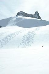 find red riding hood (czczboo) Tags: chamonix teaser