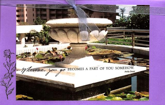 lily pond at hong kong parkview