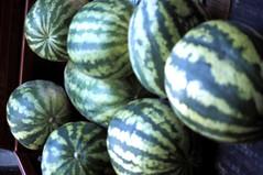 watermellon (flickrusertest5) Tags: fruit watermellon