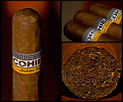 Cuban Cohiba Robustos (Mixmaster) Tags: macro history leaves collage delete10 delete9 geotagged delete5 paul delete2 delete6 delete7 smoke havana cuba delete8 delete3 cigar delete delete4 save ring rwanda story castro fidel worldcup habana delete11 joint rolled cohiba rusesabagina robusto replaced