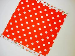 tissue holder/ passo4