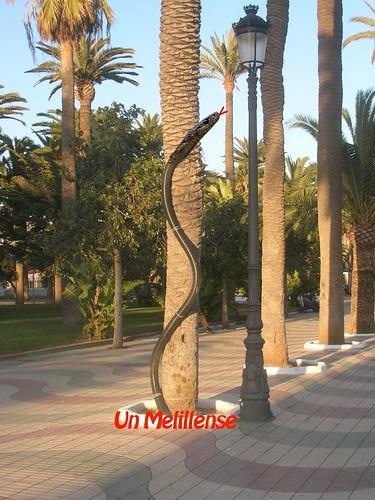 Serpiente en el Parque H