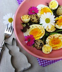 Spring salad (C.Mariani) Tags: flowers easter march salad spring bravo eggs cookiecutter mycreation outstandingshots thepainter abigfave anawesomeshot colorphotoaward impressedbeauty superbmasterpiece flickrdiamond