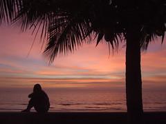 Silhouette Sunset Sea Beach Sonnenuntergang Strand Meer (hn.) Tags: ocean trees sunset sea vacation sky cloud sun tree water silhouette clouds strand kambodscha meer muy seasia soasien southeastasia sdostasien wasser sonnenuntergang silhouettes wolke wolken palm shore ufer sonne seashore palme palmen kohkong kokosnusspalme kokospalme kokong tropicalvacation kokospalmen tp0607 unalteredimagelooksbetterafteradjustments tropicalholidays kohkongprovince kokongtown kokongprovince kohkongtown mondulseima mondulseimabeach
