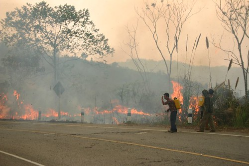 Forest fire in NE Thailand...