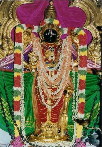 49203441_Thirunarayana