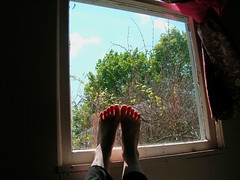Windowsill Feet 58/365