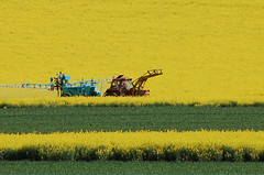 tractor yellow field - by djembali
