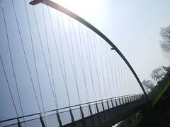 Bicycle wheel bridge