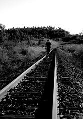 Companheiro Fiel (crenan) Tags: railroad me d50 interesting nikon iron calendar photos fast explore cachorro santamaria trem score caminhada caminho trilhos blueribbonwinner d80 scoremefast cmeradeourobrasil crenan grupo1a10brasil visofotogrfica carlosrenanpiressantos
