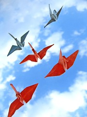 Flying cranes (Fer Gregory) Tags: pictures camera blue sky orange white milan macro bird birds mxico clouds mexicana paper de mexico photography fly flying photo interestingness interesting aperture origami flickr afternoon foto photographer with shot artistic photos crane background sony air taken floating 8 cybershot best mexican fotos fernando mexique gregory 80 f828 mexicano camara con recent dsc megapixel fotografo tomadas crone relevant freg dscf828 artisticas megapixeles abigfave nteresting diamondclassphotographer flickrdiamond fr3g flickrphotoaward cybershotdscf828 reg