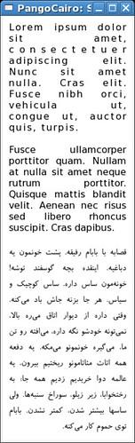פנגו בערבית