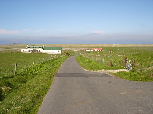 Rush hour in Berneray aka the M25