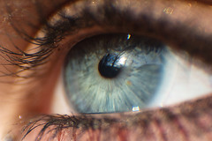 (Rán) Tags: blue macro beautiful iceland eyes explore 2007 rán magnúsdóttir hófí ránmagnúsdóttir ranmagnusdottir