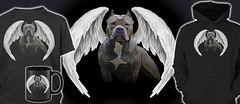 In Memory of Pit Bull Dogs killed by BSL, Breed Specific Legislation (Beverly & Pack) Tags: pitbull pitbulls pit bull terrier american breed americanpitbullterrier americanstaffordshireterrier bullterrier dog dogs puppy bsl breedspecificlegislation discrimination angel wings white croppedears black mourning hoodie tee tshirts popular inmemory mugs posters phonecases blue honor loyal wrong puppies bully bullies bulldog proud pride remember