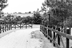Camino (Alvimann) Tags: alvimann canon canoneos550d canon550d canoneos road camino tierra ground cerca fence madera wood wooden