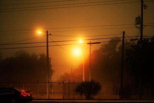 Foggy Dawn .19
