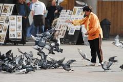 be happy!! (mojlogin) Tags: light people woman nikon pigeon poland polish eat d200 krakw cracow helluva abigfave