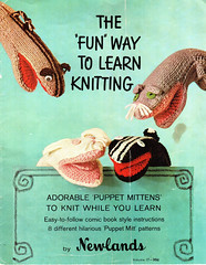 Cover: The 'Fun' Way to Learn Knitting