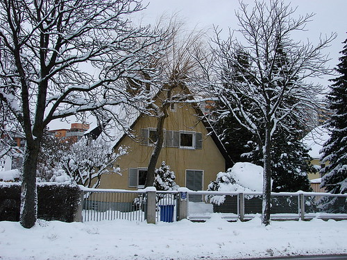 A winter house