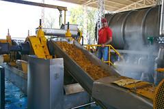 Roast Agave Roller Mill (Tequila Espolon)