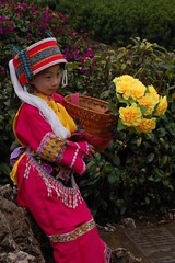 Crowd pleaser (Ian Riley [on the right side of the fence]) Tags: china flowers girl costume basket limestone kunming yunnan karst shilin stoneforest geological