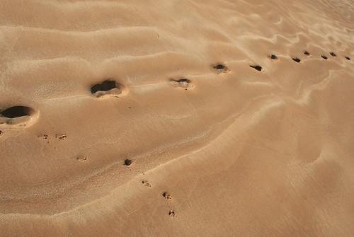 Path in the sand