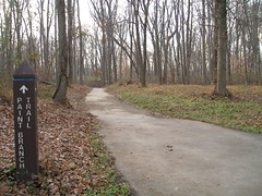 Paint Branch Trail