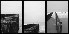 ... At the beach ... (Ieneke) Tags: sea white black beach nature water strand blackwhite belgium zwartwit belgi natuur zee shore atthebeach zwart wit seaview zand triptic golven ieneke golfjes