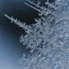 Frost (wendymerle) Tags: window mrjackfrost frost crystals windowfrost  anawesomeshot