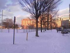 Quincy Park in Ice