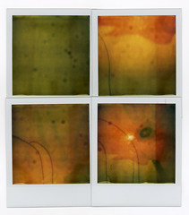 lamps by 4 (flybutter) Tags: red orange green film yellow polaroid four quad lamps shuffle flashless onestep 779 flybutter ridiculouslyexpiredfilm exp1099 quadratypch polamosaic