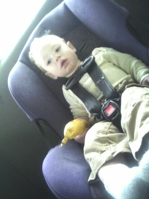 Booger & a banana in the car