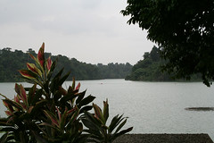 sgmacritchie003view